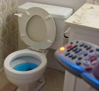 remote flush